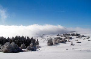 eshop-snowboards-cz